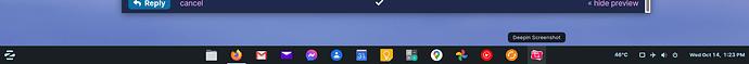 DeepinScreenshot_select-area_20201014132401