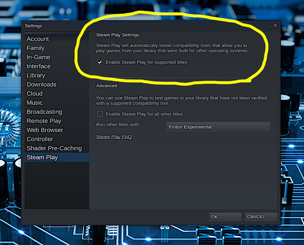 Enable Steam Play On Steam