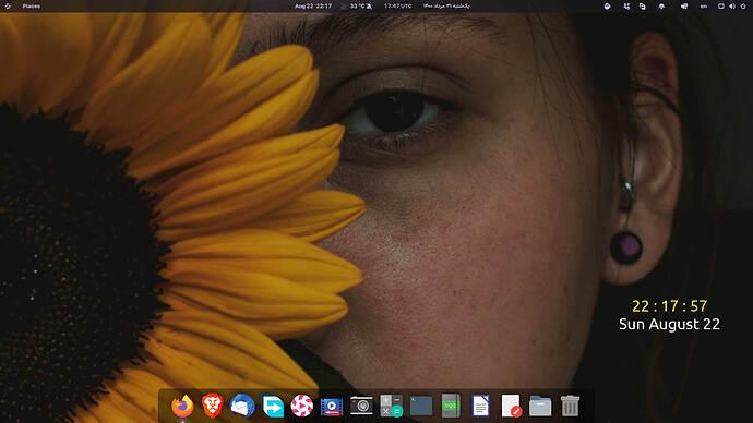 Screenshot from 2021-08-22 22-17-58