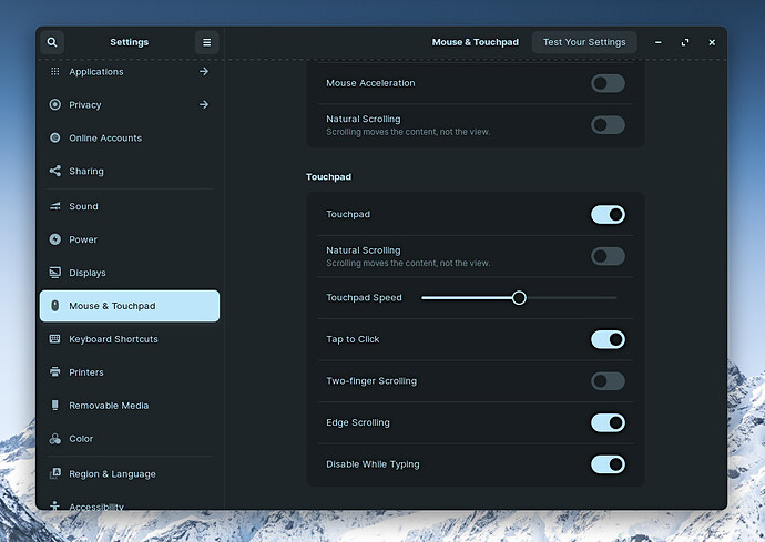 Settings Mouse & Touchpad Make Sure Enabled